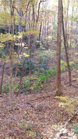 99999 Hickory Acres Road #49, Hendersonville, NC 28792 (#3433222) :: Puffer Properties