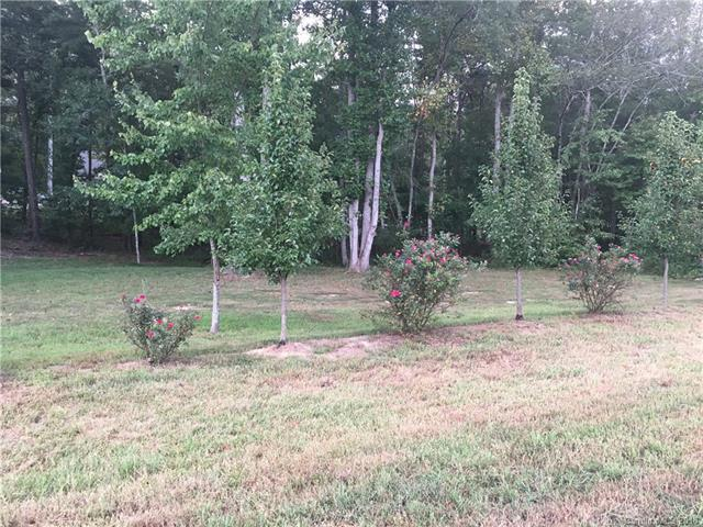 Lot 9 Riverstone Drive, Lincolnton, NC 28092 (#3433252) :: Team Honeycutt