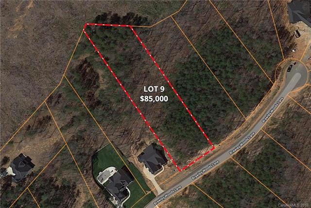 131 Brawley Woods Lane #9, Mooresville, NC 28115 (#3433572) :: Mossy Oak Properties Land and Luxury