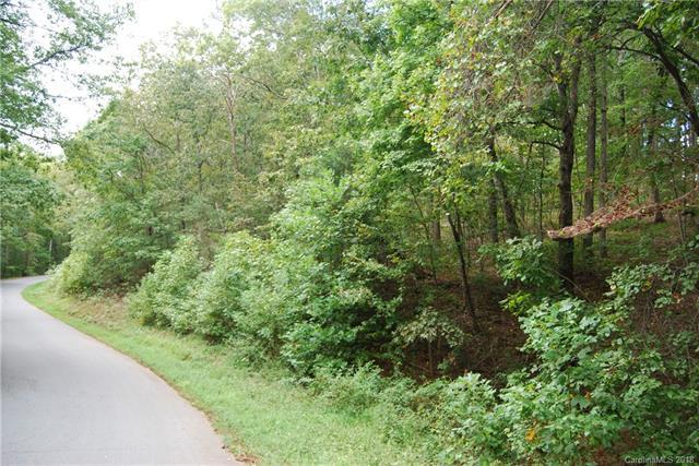 Lot 193 Plantation Drive Lot 193, Rutherfordton, NC 28139 (#3433634) :: Puma & Associates Realty Inc.