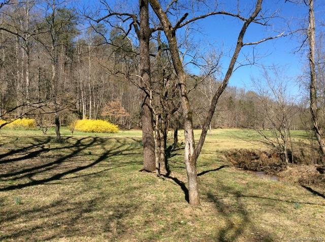 1 Fire Tower Road, Mill Spring, NC 28756 (#3433914) :: Robert Greene Real Estate, Inc.