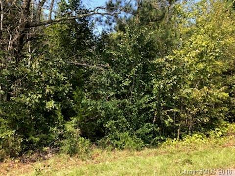 26 Pineview Drive #0, Rutherfordton, NC 28139 (#3434277) :: LePage Johnson Realty Group, LLC