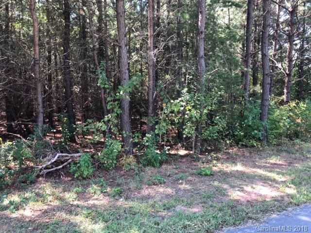 25 Pineview Drive #25, Rutherfordton, NC 28139 (#3434328) :: LePage Johnson Realty Group, LLC