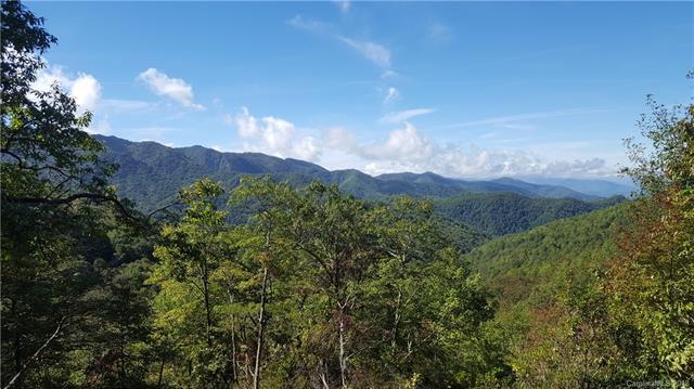 TRACK B Picnic Gap Road, Maggie Valley, NC 28751 (#3435018) :: Exit Mountain Realty