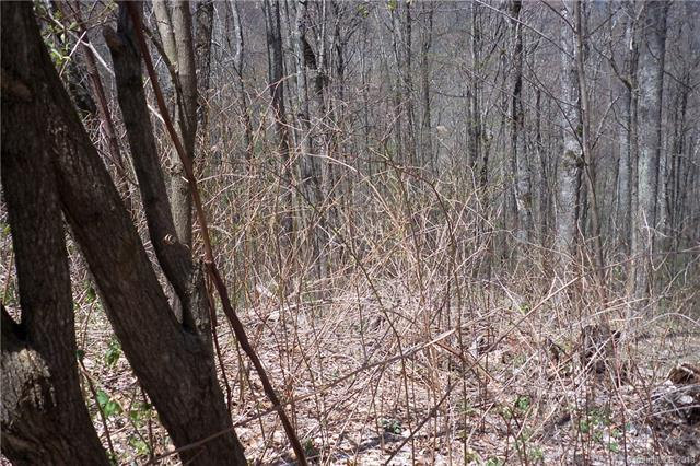 Lot 503 Slippery Rock Road, Waynesville, NC 28785 (#3435069) :: High Performance Real Estate Advisors