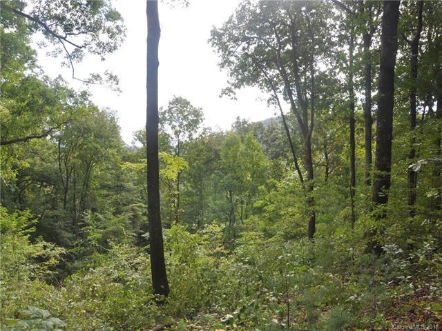 LOT 38 + Pheasant Run, Hendersonville, NC 28739 (#3435565) :: Charlotte Home Experts