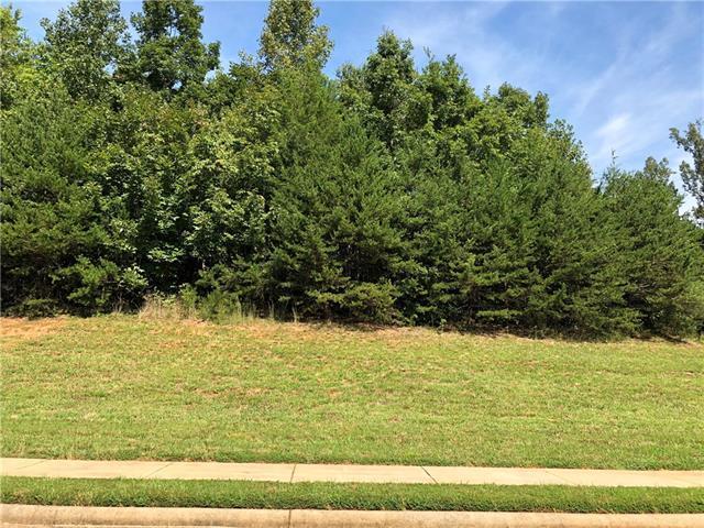 4087 Bob Jones Drive NE #30, Conover, NC 28613 (#3436044) :: Scarlett Real Estate