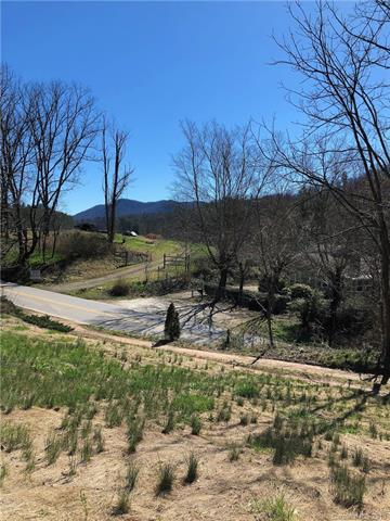350 Village Road, Fairview, NC 28730 (#3436140) :: Johnson Property Group - Keller Williams