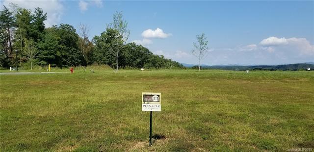 158 Waightstill Drive #13, Arden, NC 28704 (#3436522) :: Puffer Properties