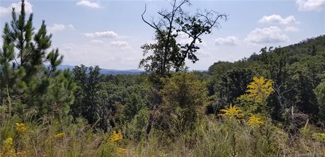 16 Britton Knoll Pass #51, Arden, NC 28704 (#3436536) :: Puffer Properties