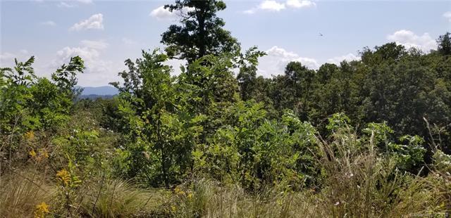 24 Britton Knoll Pass #54, Arden, NC 28704 (#3436538) :: Puffer Properties