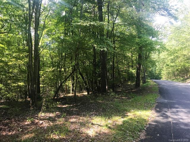 LOT 5 Whitney Boulevard, Lake Lure, NC 28746 (#3436726) :: The Ann Rudd Group