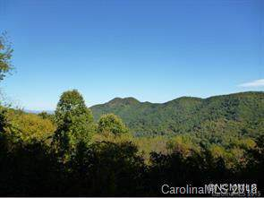 229 Bearwallow Road #10, Leicester, NC 28748 (#3436727) :: Keller Williams Professionals