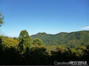 229 Bearwallow Road #10, Leicester, NC 28732 (#3436727) :: Exit Mountain Realty