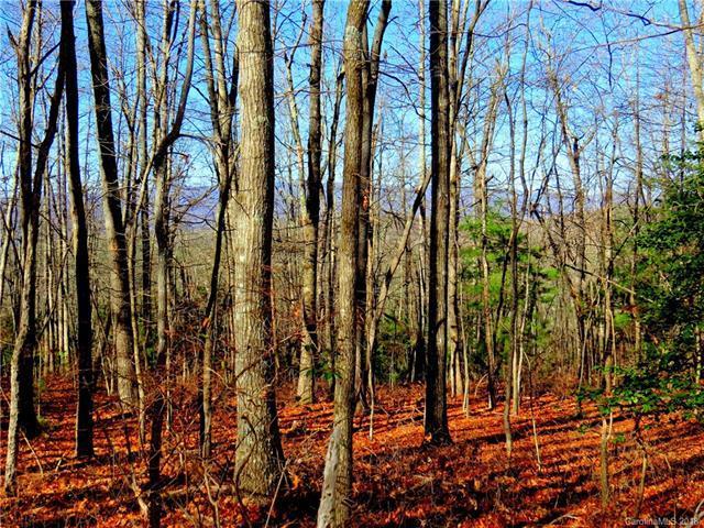 733 Slick Rock Road 1-A, Brevard, NC 28712 (#3437090) :: Johnson Property Group - Keller Williams