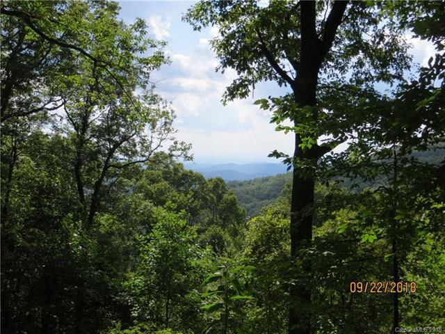 97 Bear Trail #53, Fairview, NC 28730 (#3437193) :: Puffer Properties