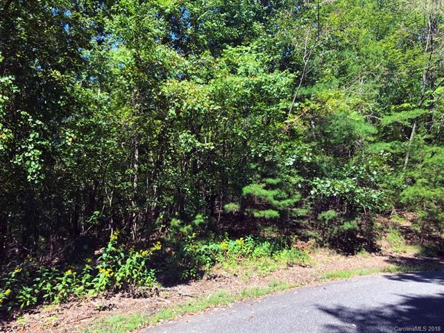 LOT 11 Crab Apple Court, Lake Lure, NC 28746 (#3437397) :: The Ann Rudd Group