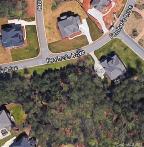 3054 Feathers Drive #91, York, SC 29745 (#3437705) :: Mossy Oak Properties Land and Luxury