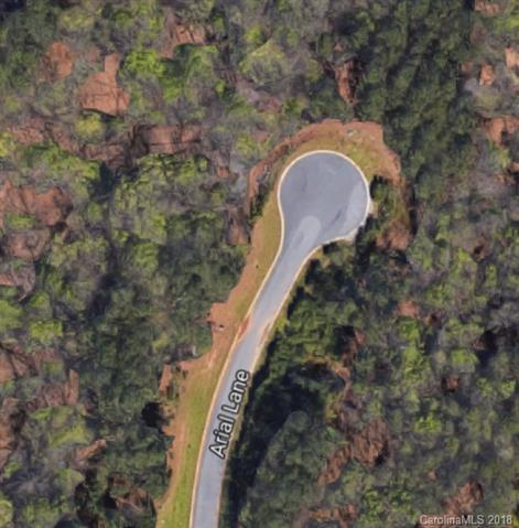 3825 Arial Lane #143, York, SC 29745 (#3437764) :: Mossy Oak Properties Land and Luxury