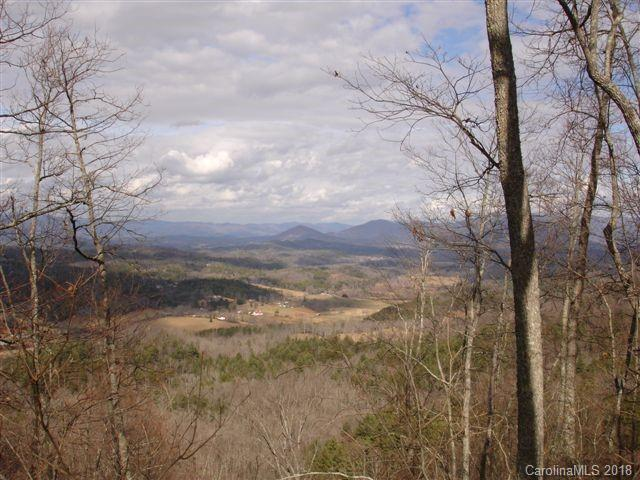703 Madison Lane Tract 5, Lot 3, Brasstown, NC 28902 (#3438760) :: Stephen Cooley Real Estate Group