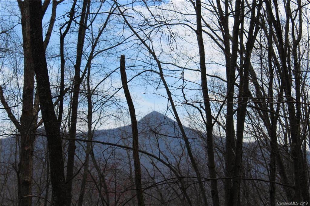 38.54 acres Sams Branch Road - Photo 1
