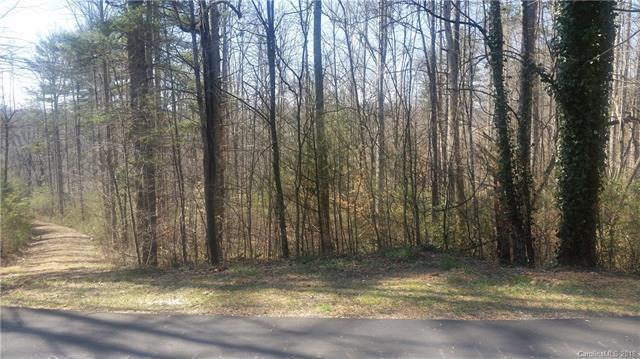 14 & 48 Turkey Paw Lane 10 & 11, Hendersonville, NC 28739 (#3439345) :: Puffer Properties