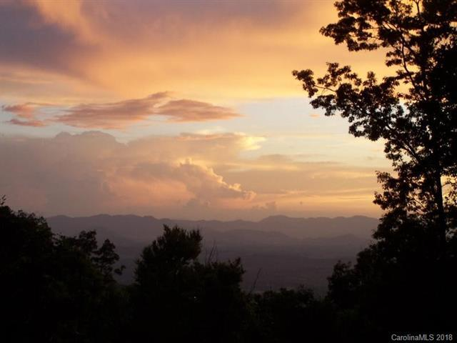 352 Gentian Trail Lot 4, Weaverville, NC 28787 (#3439442) :: Charlotte Home Experts