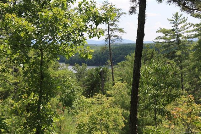 1425 Catawba Trail #163, Nebo, NC 28761 (#3439487) :: LePage Johnson Realty Group, LLC