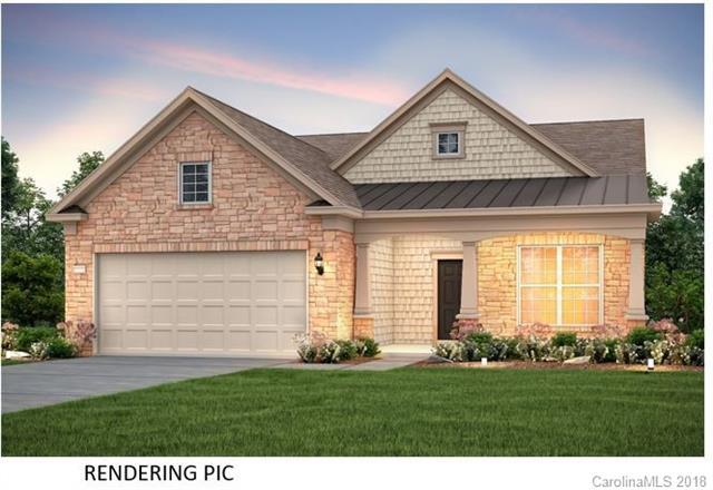 738 Peach Valley Lane, Fort Mill, SC 29715 (#3439509) :: Charlotte Home Experts
