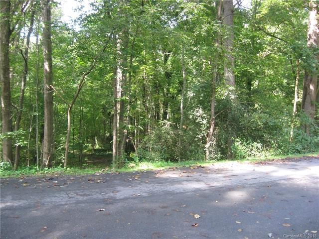 00 Thomas Park Drive, Waynesville, NC 28786 (#3439619) :: Homes Charlotte