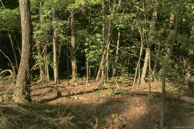 TBD Staghorn Drive Lot 33, Hot Springs, NC 28743 (#3439665) :: Carlyle Properties