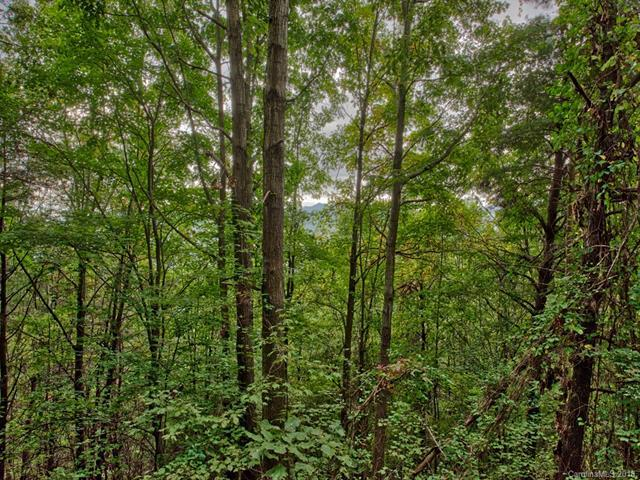 0 Roberts Mountain Road #0, Clyde, NC 28721 (#3440020) :: Exit Mountain Realty