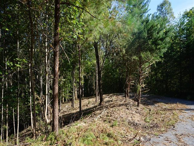 LOT 90 Northridge Drive, Rutherfordton, NC 28139 (#3440427) :: Premier Realty NC
