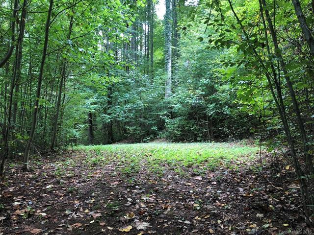 Lot 330 Mountain Lake Drive #330, Waynesville, NC 28785 (#3440576) :: Team Honeycutt