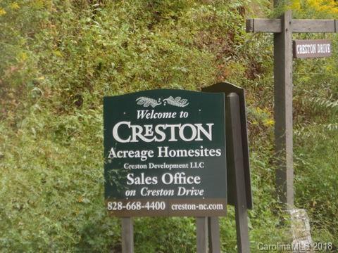 548 N Haven Drive T-50, Black Mountain, NC 28711 (#3440646) :: Homes Charlotte