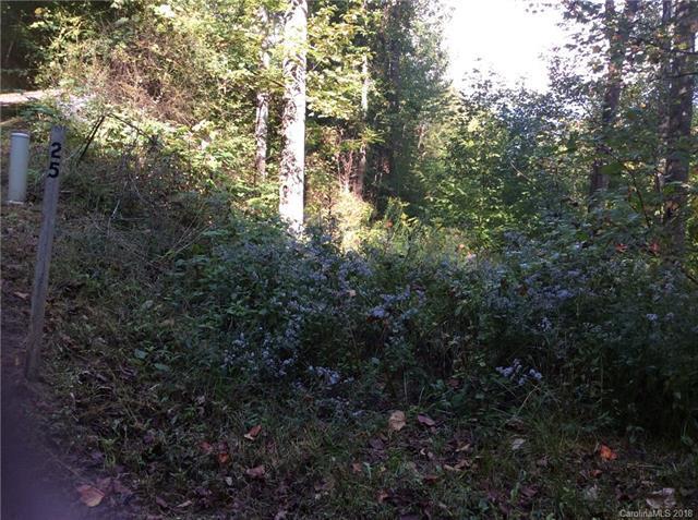 0000 Appalachian Trail #25, Maggie Valley, NC 28751 (#3441139) :: Keller Williams Professionals