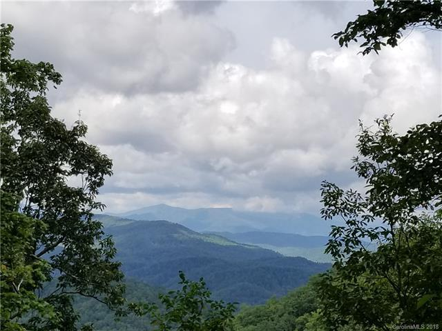 Tract 10 Kate Mountain Road #10, Black Mountain, NC 28711 (#3441257) :: Zanthia Hastings Team