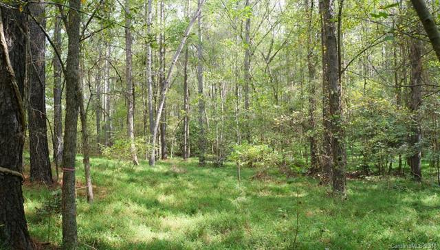 6005 Chimney Bluff Road #12, Lancaster, SC 29720 (#3441921) :: Mossy Oak Properties Land and Luxury