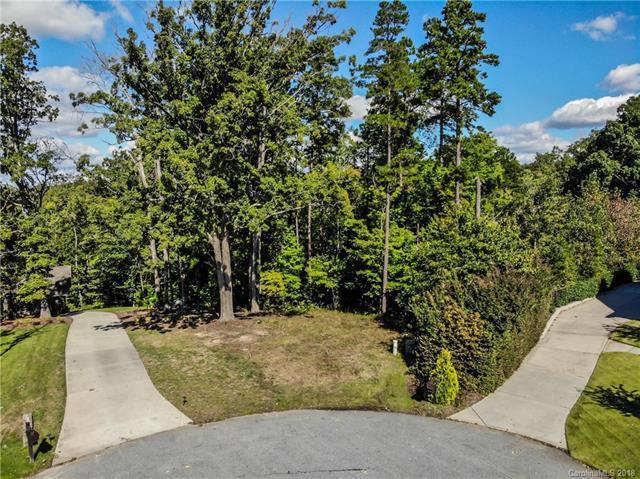 136 Chestnut Bay Lane, Mooresville, NC 28117 (#3441947) :: TeamHeidi®