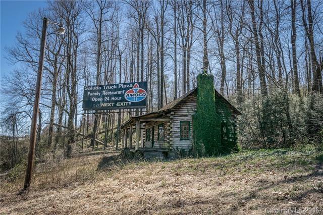 1006 State Road, Saluda, NC 28773 (#3442048) :: DK Professionals Realty Lake Lure Inc.
