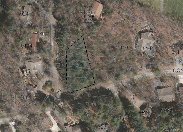 TBD Middle Connestee Trail L41/U08, Brevard, NC 28712 (#3442099) :: Robert Greene Real Estate, Inc.