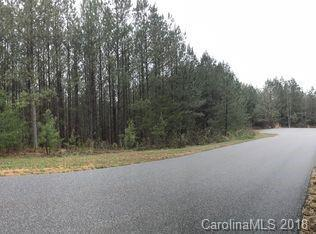000 Destiny Drive #7, Mill Spring, NC 28756 (#3442440) :: DK Professionals Realty Lake Lure Inc.