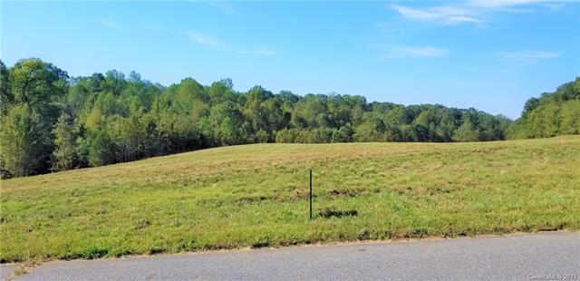 12 Gourdvine Drive #12, Marshville, NC 28103 (#3442441) :: LePage Johnson Realty Group, LLC