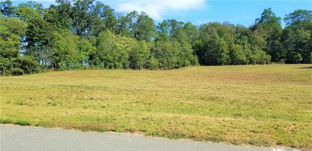 15 Kissy Bottom Lane #15, Marshville, NC 28103 (#3442492) :: LePage Johnson Realty Group, LLC