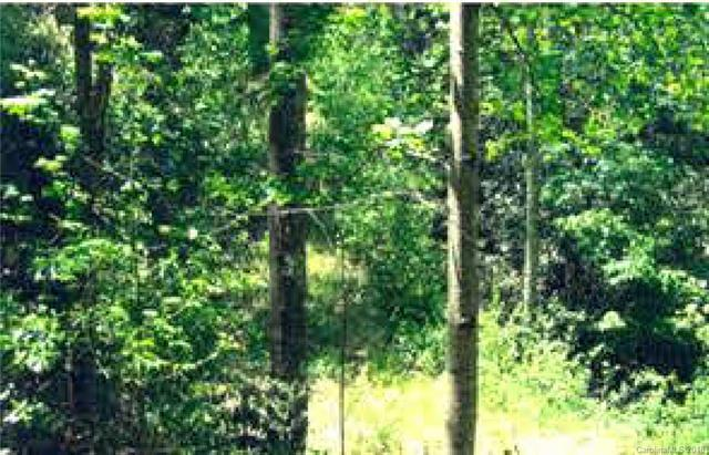 Lot 2 Spring Road #2, Hendersonville, NC 28792 (#3442710) :: Exit Mountain Realty