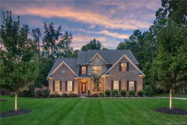 8250 Curico Lane, Charlotte, NC 28227 (#3442793) :: Exit Mountain Realty