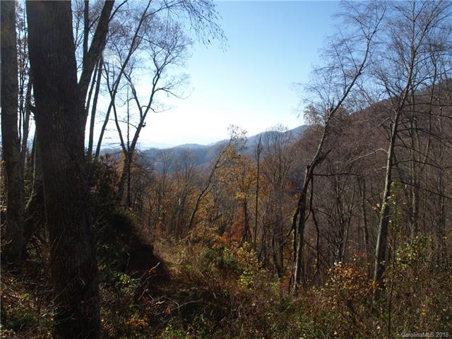 00 Rocky Acres Road #11, Canton, NC 28716 (#3442801) :: The Sarver Group