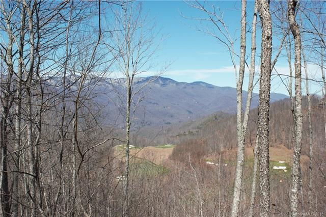 59 Old Growth Way #59, Sylva, NC 28779 (#3443065) :: Roby Realty