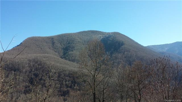 103 Davy Crockett Drive #103, Maggie Valley, NC 28751 (#3443144) :: Rinehart Realty