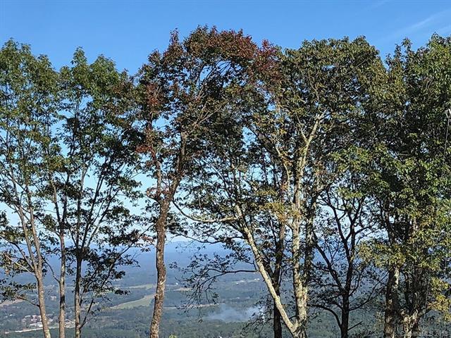 00 White Oak Mountain Drive #52, Columbus, NC 28722 (#3443292) :: RE/MAX Four Seasons Realty